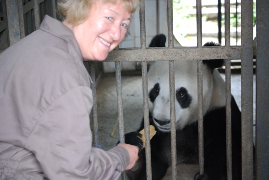Marilyn feeding Giant Panda